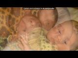 «я и моя семья» под музыку Танцы минус - Детская песенка про любовь.. Picrolla