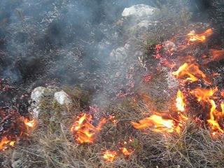 пожар на караби-яйле