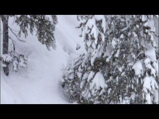 Йеллоустоун: ЗИМА / Заметки о дикой природе / Yellowstone (2009)