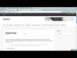 37 Default Page Template (page.php) and Custom Page Templates Archives and Full Width