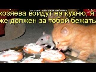 «КОТЫ В КАРТИНКАХ( продолжение)» под музыку Лариса Брохман - Чёрный-пречёрный кот. Picrolla