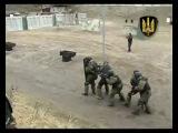 Ukrainian Special Forces - CSO A