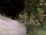 Зорро: Шпага и Роза - 85 серия