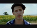 Paul Cantelon - Sunflowers (Film