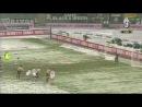 18\01\2004 Juventus-Siena 4-2
