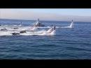 Люди летают и плавают как дельфины