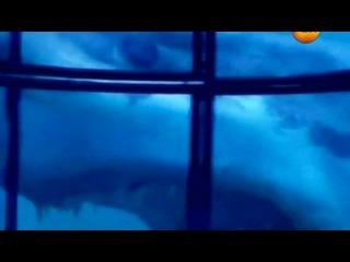 Пришельцы Государственной важности Фильм 5 Охота на НЛО Часть 3
