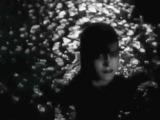 James Pants - Strange Girl