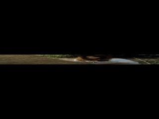 Приключения королевского стрелка Шарпа (Серия 10) - Осада Шарпа