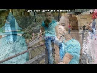 «святогорск» под музыку Корни - песня про Букиных. Picrolla