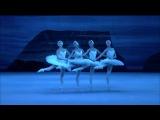 Лебединое озеро - Танец маленьких лебедей