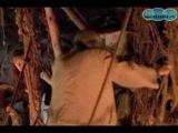 Джош Керби... Воин во времени 5- Волшебная пещера (1996)