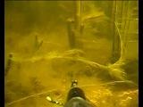 Вода как песня (подводная охота)...- Water is like a song ( spearfishing).avi