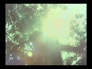 Кобра / Nagin [1976] - Фильм (проф.перевод)