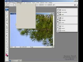 Фотошоп с нуля Урок 5 - Начало работы в Фотошоп.