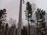 На лыжне в лесу(с.Новобелокатай,март 2011год)