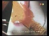 Реклама Alka-Seltzer с Сальвадором Дали