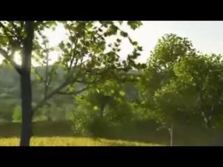основ…При песня песни петлюра по дереву Favorites Add