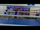 Бокс. 05.02.2012.
