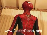 Spider-Man Costume 2007