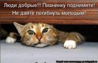 Алексей Орлов, 6 мая , Кимовск, id109311467