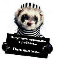 Денис Соловьев, 21 июля 1988, Екатеринбург, id93824774