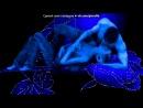 «любовь» под музыку ★ Nightwish - Самый ахуенний медляк... (OST Eight BelowБелый плен ) ★. Picrolla