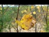 «Осенняя Рапсодия» под музыку В.А. Моцарт -  Времена года - Гроза, Звуки природы-шум дождя и пение птиц. Picrolla