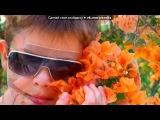 Израильске царство под музыку Don Omar feat. Lucenzo - Danza Kuduro. Picrolla