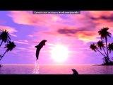 «С моей стены» под музыку Света - Синеглазые дельфины. Picrolla