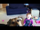 Забавный малыш( смешное видео)