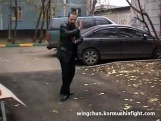 Боевая техника Вин Чун Кунг фу. Первые шаги (Юрий Кормушин)