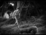 Tarzan the Ape Man 1932 RADIO-ALCALA httpradioalcala.ucoz.ro