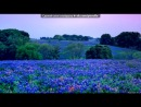 "«ФотоМагия» под музыку Michael Giacchino - саундтрек к фильму ""Миссия: невыполнима 3"", 2006. Picrolla"