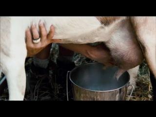 Трейлер без цензуры фильма «Путешественники»