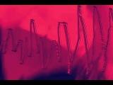 FORT ROMEAU - KINGDOMS teaser