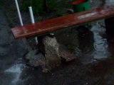 14.05.2012  в Самаре прошел дождик..