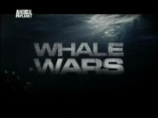 Китовые войны - сезон 1 серия 06. Уступи дорогу дамам