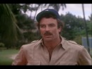 Magnum pi You are Cretin