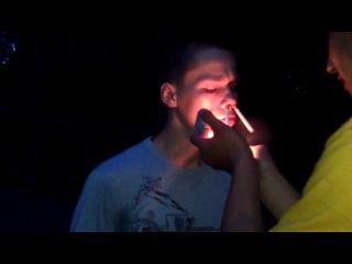 чибис курильщик