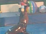 дельфинарий на Крестовском, были 11.02.12г. на 12час.