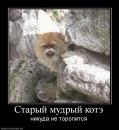 Фото Тимофея Барлекова №4