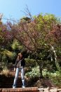Anita Yuen фото #26