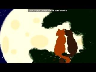 «Белка и Ежевика)))» под музыку Коты - Воители. Белка и Ежевика. - Звезда. Picrolla
