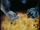 Цветок папоротника  Квітка папороті [1979]