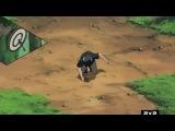 Naruto Shippuuden / Наруто Ураганные Хроники 113 серия перевод 2х2
