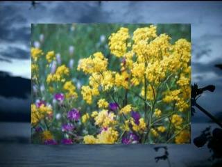 РФ. Башкирия. Санаторий Якты-Куль. #лечение за рубежом #лечение за границей #медицинский туризм