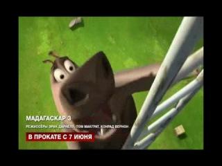 СЕКРЕТ УСПЕХА мультфильма