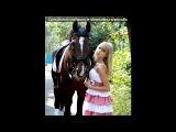 «Конники из КСК Алан и лошади)» под музыку Гимн конного спорта- - конный спорт. Picrolla