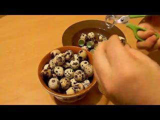 Ножницы для разрезания скорлупы перепелиных яиц.Палец сюда не пихаем,это больно))